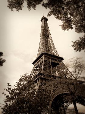 Last Day in Paris I by Emily Navas