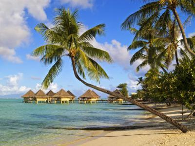 Intercontinental Moana Beach Bora Bora Bungalows