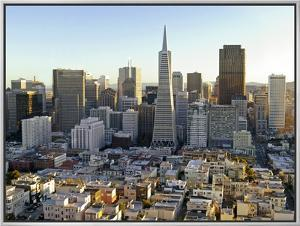 Transamerica Pyramid Building and Downtown from Top of Coit Tower by Emily Riddell