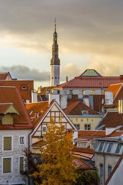 Baltic States, Estonia, Tallinn. Rooftops near city walls. by Emily Wilson