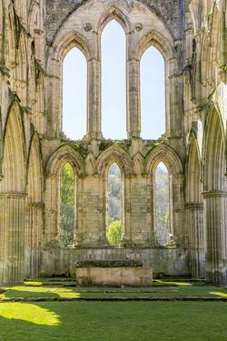 England, North Yorkshire, Rievaulx. 13th c. Cistercian ruins of Rievaulx Abbey. English Heritage an by Emily Wilson