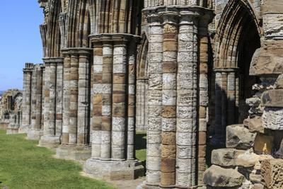 England, North Yorkshire, Whitby. Ruins of Whitby Abbey by Emily Wilson