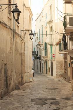 Italy, Puglia. Small commune of the Metropolitan City of Bari, Alberobello. by Emily Wilson