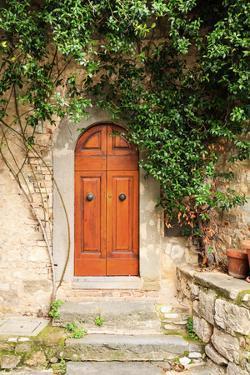Italy, Tuscany, Greve in Chianti. Chianti vineyards. Stone farm house entrance door. by Emily Wilson
