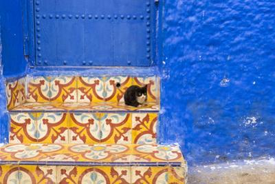 North Africa, Morocco, Traiditoional Moroccan architecture of Chefchaouen.