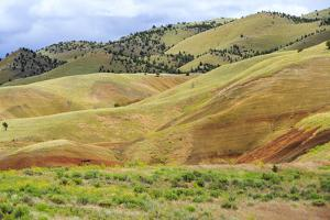 OR, Redmond, Bend, Mitchell. Series of low clay hills striped in colorful bands of minerals by Emily Wilson