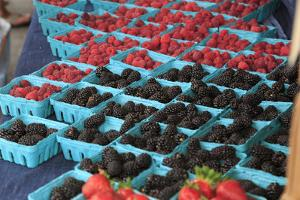 OR, Redmond, Bend. The Bend Farmers Market at Top of Mirror Pond Park. Wild berries for sale. by Emily Wilson