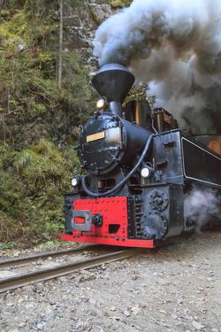 Romania, Viseu de Sus, Wood-burning steam locomotive. by Emily Wilson