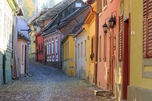 Transylvania, Romania, Mures County, Sighisoara, cobblestone residential streets. by Emily Wilson