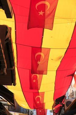 turkey, Istanbul, Sultanahmet district, Turkish flags by Emily Wilson