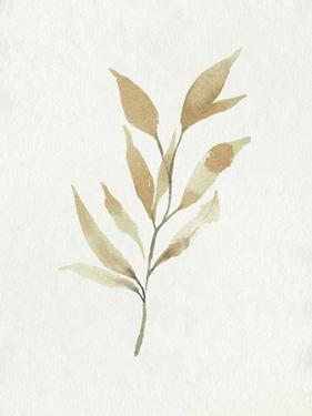 Soft Autumn Branch II by Emma Caroline