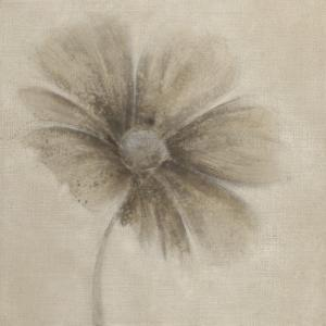 Tonal Flowers I by Emma Forrester