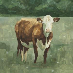 Hereford Cattle I by Emma Scarvey