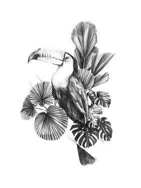 Toucan Toile I by Emma Scarvey