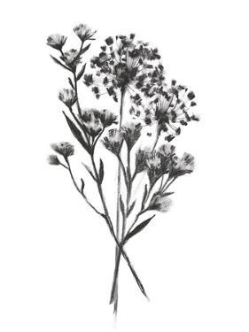Wild Roadside Bouquet II by Emma Scarvey