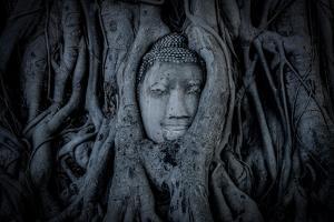 Buddha Head in Ayutthaya by Emmanuel Charlat