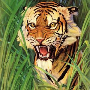 """""""Snarling Tiger,"""" April 19, 1941 by Emmett Watson"""