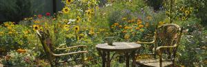 Empty Chairs and a Table in a Garden, Taos, New Mexico, USA