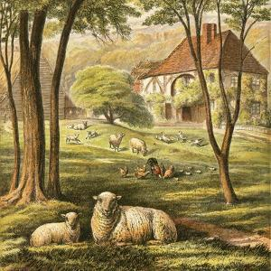 Farmhouse by English