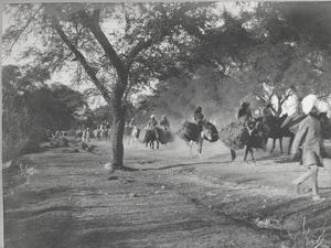 Along the Grand Trunk Road into Delhi, December 1912 by English Photographer