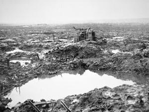 Battlefield Near Passchendaele, Flanders, October 1917 by English Photographer