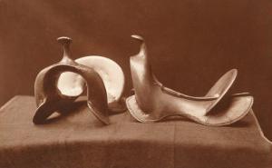 English Saddles, Photograph