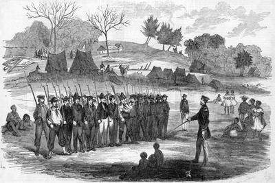 https://imgc.allpostersimages.com/img/posters/engraving-of-william-walker-training-his-soldiers-at-virgin-bay_u-L-PRG44N0.jpg?p=0