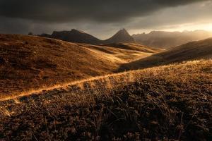 Last Autumn Light by Enrico Fossati