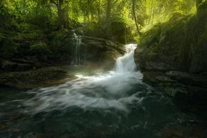 Stream of Life by Enrico Fossati