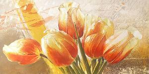 Orange Tulips by Enrico Sestillo
