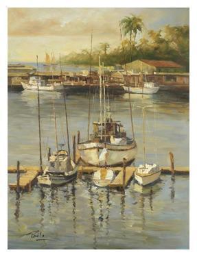 Bahama Harbor by Enrique Bolo