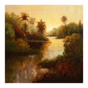 Tropical Cove by Enrique Bolo