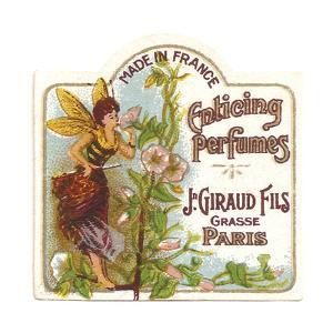 Enticing Perfumes (5)
