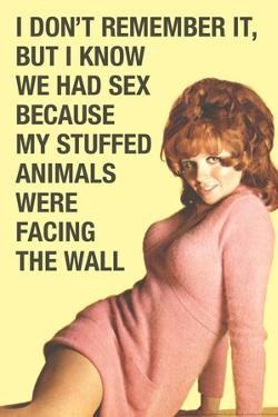 Don't Remember Sex But Stuff Animals Facing Wall Funny Poster by Ephemera