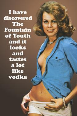 I Discovered Fountain Of Youth It Tastes Like Vodka Funny Plastic Sign by Ephemera