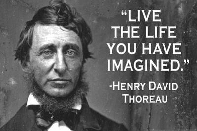 Live The Life You Have Imagined - Henry David Thoreau Quote Poster by Ephemera