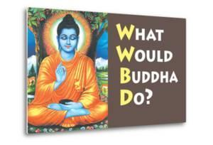 What Would Buddha Do Funny Poster Print by Ephemera