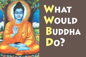 What Would Buddha Do Funny Poster by Ephemera