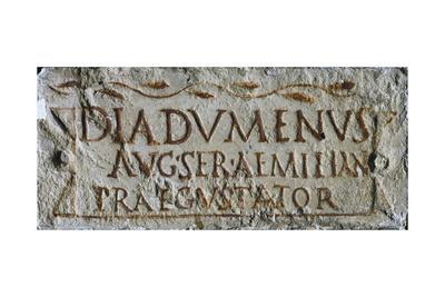 https://imgc.allpostersimages.com/img/posters/epigraph-of-imperial-servant-diadumenos-artifact-uncovered-in-columbarium-of-vigna-pigtails-rome_u-L-PRLERJ0.jpg?p=0