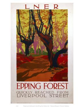 Epping Forest Quickly Reached
