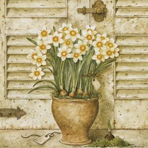 Potted Flowers I by Eric Barjot