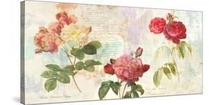 Redoute's Roses 2.0 by Eric Chestier