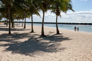 Near Beach Chairs and Palm Trees, a Couple Walks Toward the Ocean Water by Eric Kruszewski