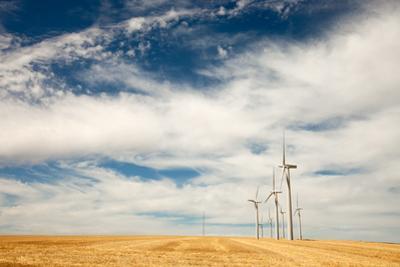 Several Windmill Turbines on the Open Landscape Outside Kennewick, Washington by Eric Kruszewski