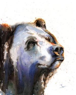 Bear Portrait by Eric Sweet