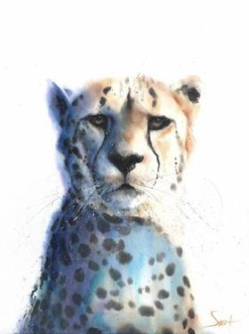 Cheetah by Eric Sweet