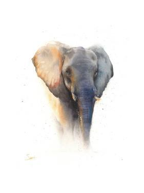 Elephant Watercolor by Eric Sweet