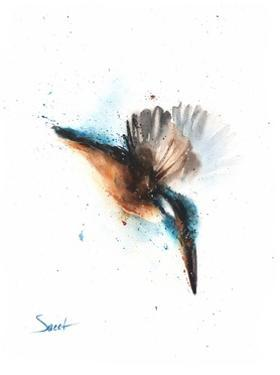 Kingfisher by Eric Sweet