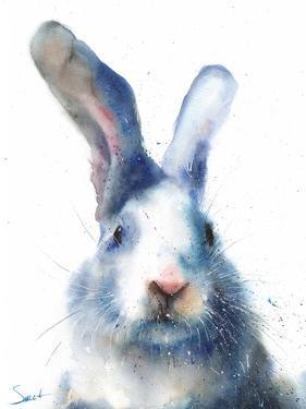 White Rabbit by Eric Sweet