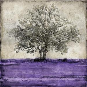 Majestic - Amethyst by Eric Turner